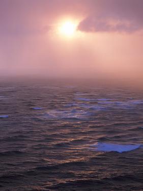 Sea, Sunset by Thonig