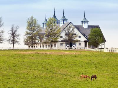https://imgc.allpostersimages.com/img/posters/thoroughbred-horses-grazing-manchester-horse-farm-lexington-kentucky-usa_u-L-PXQEH30.jpg?artPerspective=n