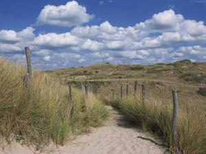 Dunes, Le Touquet, Nord Pas De Calais, France, Europe by Thouvenin Guy