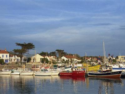 Harbour, La Cotiniere, Ile D'Oleron, Poitou Charentes, France, Europe