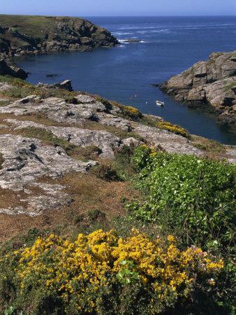 Saint Nicolas and Wild Flowers, Ile De Groix, Brittany, France, Europe