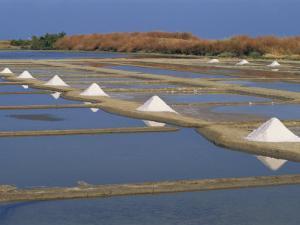Salt Pans in Marshes, Ile De Re, Poitou Charentes, France, Europe by Thouvenin Guy