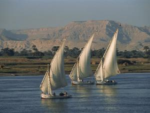 Three Feluccas Sailing on the River Nile, Egypt, North Africa, Africa by Thouvenin Guy