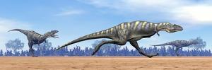 Three Aucasaurus Dinosaurs Running in the Desert