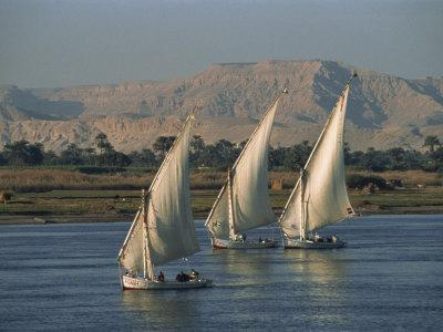 https://imgc.allpostersimages.com/img/posters/three-feluccas-sailing-on-the-river-nile-egypt-north-africa-africa_u-L-P7V6RW0.jpg?p=0