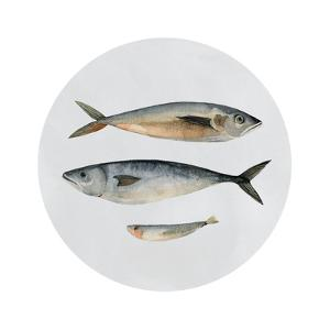 Three Fish I