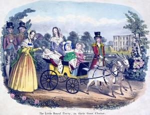Three of Queen Victoria's Children Excercising in a Goat Carriage