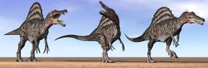 Three Spinosaurus Dinosaurs Standing in the Desert