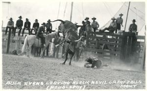 Thrown Bull-Rider, Montana