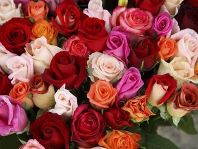 Roses for Sale at Flower Market by Tibor Bognár