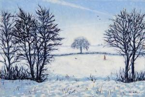 A Winters Walk by Tilly Willis