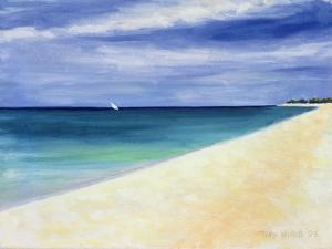 Indian Ocean II, 1995 by Tilly Willis