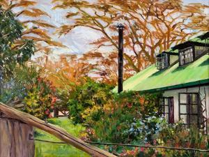Kenyan Garden, 2012 by Tilly Willis
