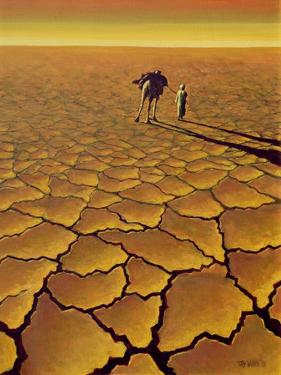 Saharan Journey, 1995 by Tilly Willis