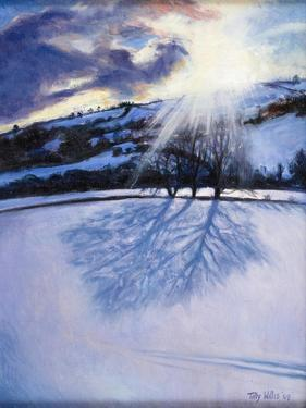 Snow Shadows, 2009 by Tilly Willis