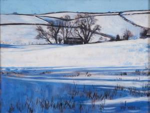 Snow Shadows, 2010 by Tilly Willis