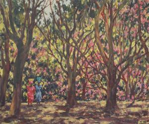 The Cashew Wood, 1998 by Tilly Willis