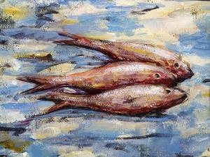 Three Fish by Tilly Willis