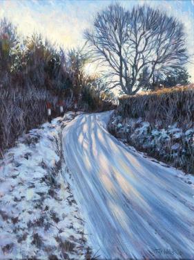 Winter Light by Tilly Willis