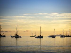 Boats in Airlie Bay at Dawn by Tim Barker