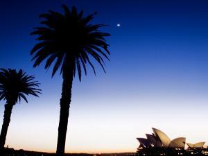 Sydney Opera House at Dawn with Trees in Silhouette by Tim Barker