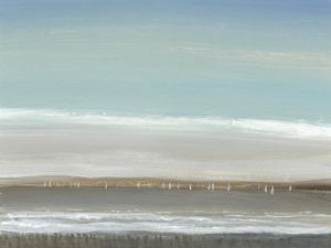 Distant Coast I by Tim