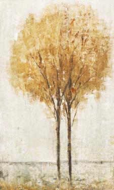 Falling Leaves I by Tim