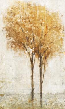 Falling Leaves II by Tim