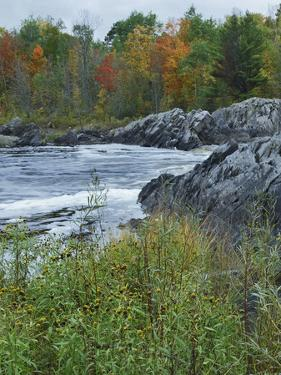 Autumn around Saint Louis River, Jay Cooke State Park, Minnesota by Tim Fitzharris
