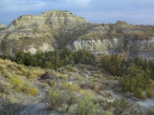 Badlands South Unit, Theodore Roosevelt National Park, North Dakota by Tim Fitzharris