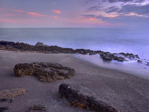 Blowing Rocks Beach, Jupiter Island, Florida, Usa by Tim Fitzharris