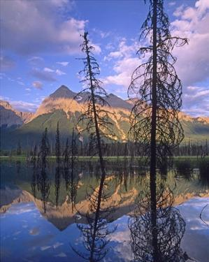 Chancellor Peak reflected in lake, Yoho National Park, BC, Canada by Tim Fitzharris