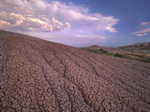 Dried and Cracked Mud, Badlands National Park, South Dakota by Tim Fitzharris