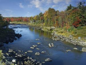 Fall Colors Along Union River Near Bar Harbor, Maine by Tim Fitzharris