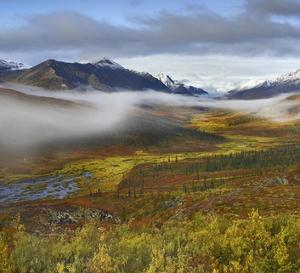 Fog over tundra, Tombstone Range, Tombstone Territorial Park, Yukon, Canada by Tim Fitzharris