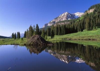Gothic Mountain and Beaver Lodge, near Crested Butte, Colorado by Tim Fitzharris