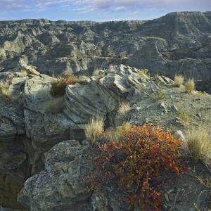 Grey Landscape of Makoshika State Park, Montana, Usa by Tim Fitzharris