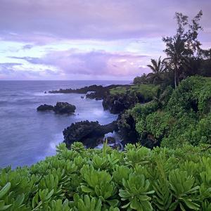Hana Coast, Maui, Hawaii, Usa by Tim Fitzharris