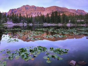 Hayden Peak Reflection into Butterfly Lake, Uinta Range, Utah by Tim Fitzharris