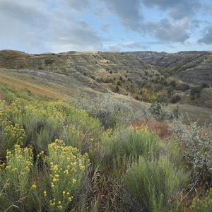 Little Missouri National Grassland, North Dakota by Tim Fitzharris