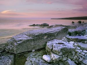 Log Dump Beach, Bruce Peninsula National Park, Ontario by Tim Fitzharris