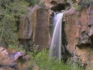 Lower Falls, Frijoles Canyon, Bandelier National Monument, New Mexico, Usa by Tim Fitzharris