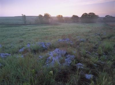 Misty morning over prairie, Tallgrass Prairie National Preserve, Kansas