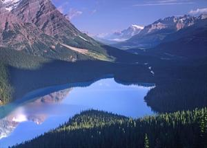 Mount Patterson at Peyto Lake, Banff National Park, Alberta, Canada by Tim Fitzharris