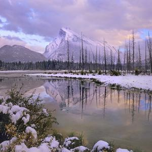Mount Rundle and Tunnel Mountain, Banff National Park, Alberta, Canada by Tim Fitzharris