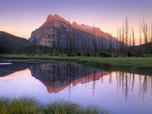 Mount Rundle at Sunrise, Banff National Park, Alberta, Canada by Tim Fitzharris
