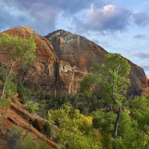 Mountain Peaks of Zion National Park, Utah by Tim Fitzharris