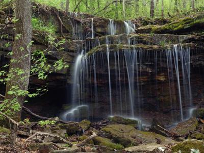 Pig Trail Falls along Mulberry National Wild, Turner's Bend, Arkansas by Tim Fitzharris