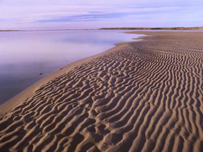 Rippled Sand, Kouchibouguac National Park, New Brunswick, Canada by Tim Fitzharris