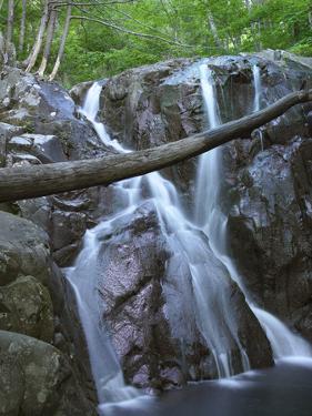 Rose River Falls, Shenandoah National Park, Virginia by Tim Fitzharris